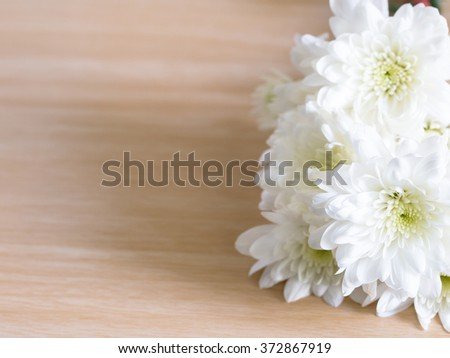 High resolution close-up photo of white flower. Shallow DOF( Depth of field), abstract style - stock photo