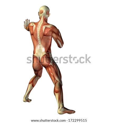 High resolution concept or conceptual 3D human anatomy body with pain isolated on white background as a metaphor to health,medicine, medical,biology, osteoporosis, arthritis,joint,inflammation or ache
