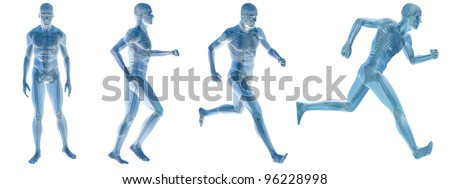 High resolution concept or conceptual white blue man anatomy illustration on white background for medical,medicine,health,rheumatism,osteoporosis,muscle,ache,arthritis,inflammation or painful design - stock photo