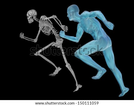 High resolution conceptual 3D human ideal for anatomy,medicine and health designs, isolated on black background. It is a man made of a skeleton and a transparent body as in a x-ray.A set or group