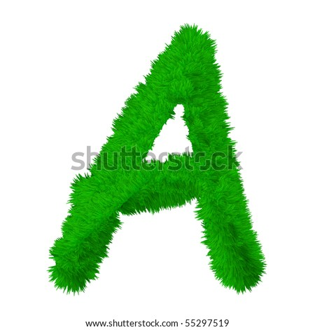 HIgh resolution grass font isolated on white background - stock photo