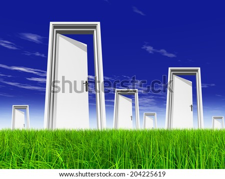 High resolution green, fresh and natural 3d conceptual grass over a blue sky background, a opened door at horizon - stock photo
