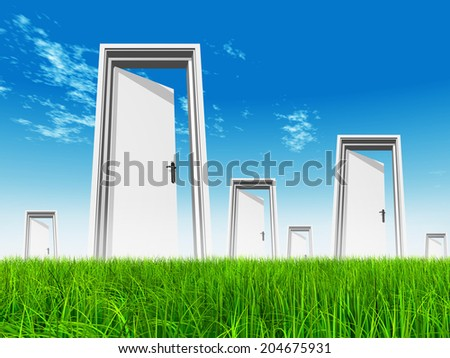 High resolution green, fresh and natural 3d conceptual grass over a blue sky background, a opened door at horizon ideal for religion, home, recreation, faith, business, success, opportunity or future - stock photo