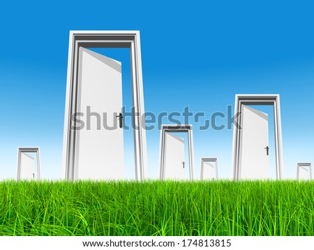 High resolution green, fresh and natural 3d conceptual grass over a blue sky background and opened doors at horizon ideal for religion, home, recreation, faith,business, success, opportunity or future