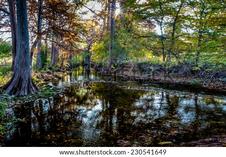 High Resolution Panoramic View of Morning Sunlight on Fall Foliage on Cibolo Creek, Texas. - stock photo