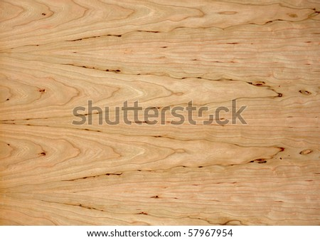 high resolution textured background of wood