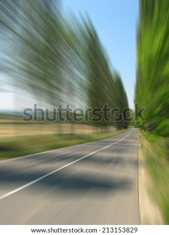 High speed road travelling - motion blurred image of summer road with bordering trees - stock photo