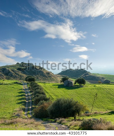 high view of dirt road lined with olive trees and old hut - stock photo