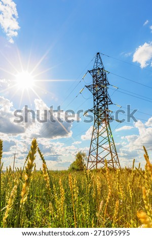 High voltage line and wheat field beneath blue sky with sun - stock photo