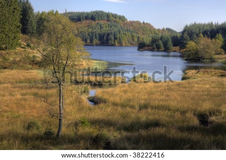 Highland Loch, Scotland - stock photo