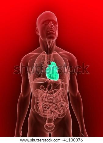 highlighted heart - stock photo