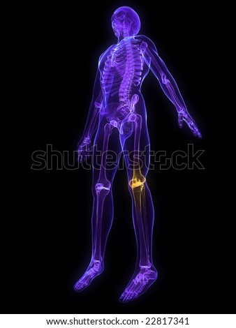 highlighted knee - stock photo