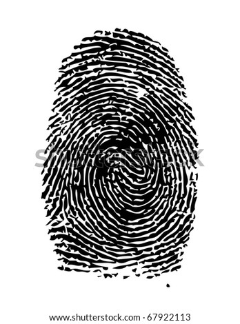 Highly detailed illustration of a fingerprint - stock photo