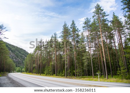 Highway in the pine  forest, Norway - stock photo