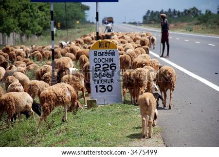 Highway NH 47, to Cochin, Kerala - stock photo