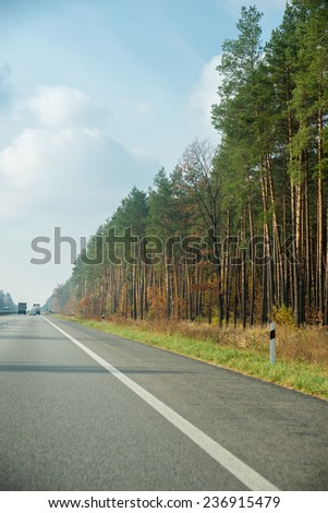 highway through beautiful autumn forest