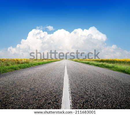 Highway through the field of sunflowers and blue sky