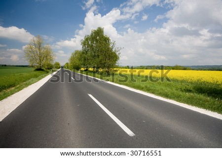 highway with rapeseed