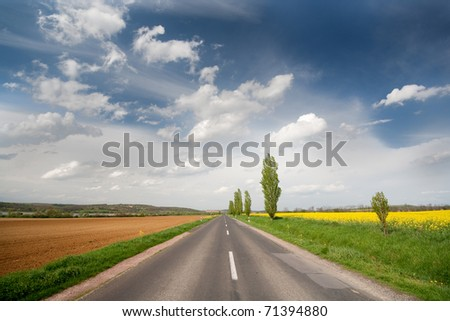 highway with rapeseed and blue sky - stock photo