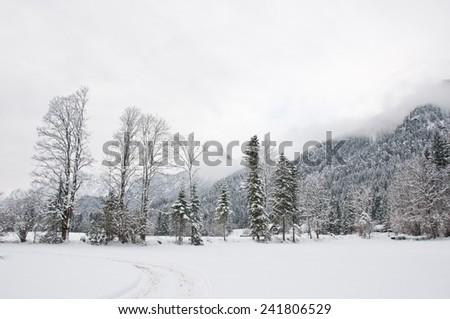 hike path through a winter landscape - stock photo