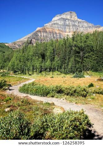 Hike To Eiffel Mountain Summit, Near Lake Louise, Banff National Park, Alberta, Canada - stock photo