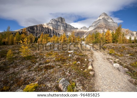 Hike up to Larch Valley, Near Lake Louise, Banff National Park, Alberta, Canada (l-r) - Eiffel Mountain, Pinnacle Peak. This is an easy 1-1/2 hike one way, start point is Moraine Lake. - stock photo