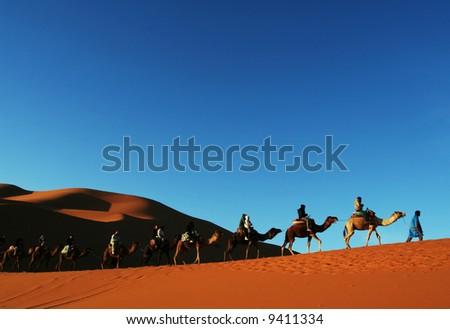 Hiker in Sahara desert - stock photo