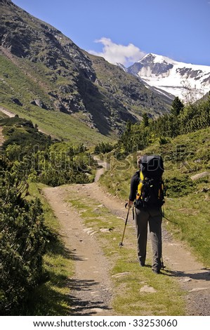 Hiker in the Eastern Alps - Similaun from the south - stock photo