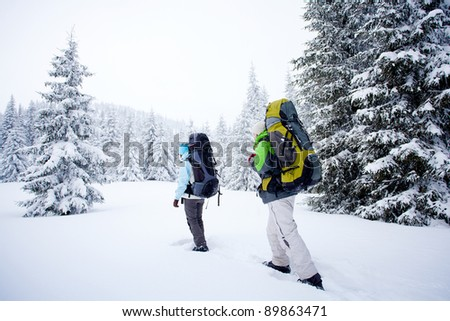 Hiker in the winter forest - stock photo