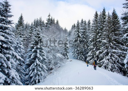 Hiker in winter in mountains - stock photo