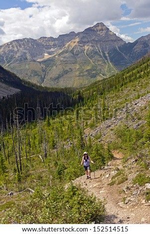Hiker on the Stanley Glacier Trail in Kootenay National Park in British Columbia - stock photo
