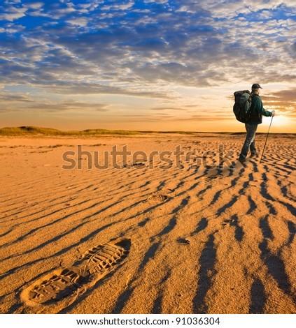 Hiker Walk Hot Sand Desert Stock Photo Shutterstock - A hot desert