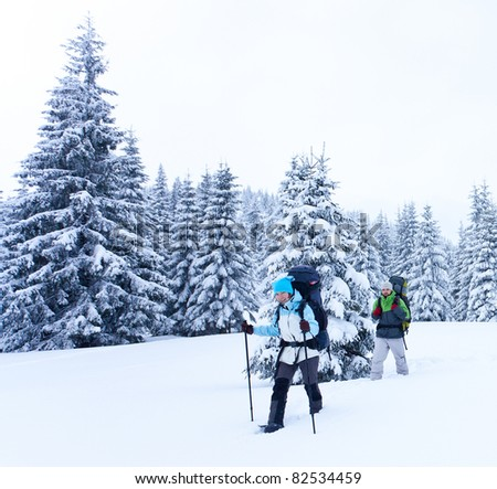 Hiker walks in snow forest - stock photo