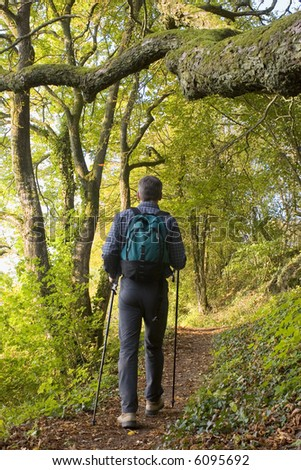 Hiker with rucksack in a green forest. - stock photo