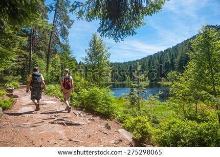 Hikers at the Herrenwieser See, Westweg, Forbach, Black Forest, Baden-Wuerttemberg, Germany, Europe - stock photo