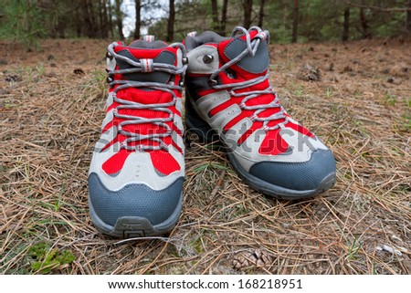hikers boots in forest - stock photo