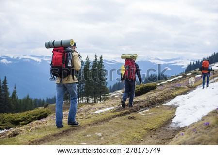 hikers hiking in the mountains - stock photo