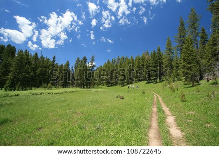 Hikers on trail passing through a meadow at Yellowstone National Park - stock photo