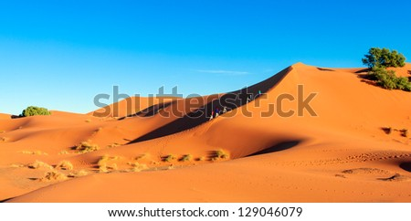 Hikers trekking up the ridge of a steep sand dune in the Sahara desert. The people show the scale of the huge orange dunes. Location: Erg Chebbi, Morocco - stock photo