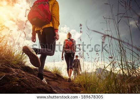 Hikers with backpacks walking in mountains at sunny day - stock photo