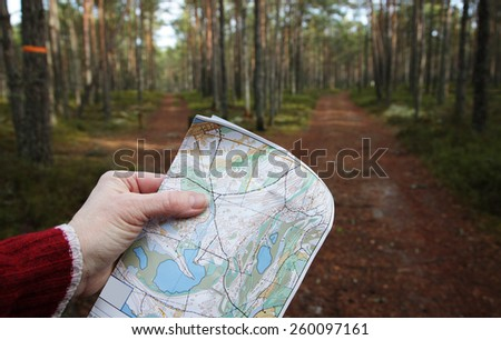 Hiking in a pine forest at sunny evening early spring. Hand holding a map in a place where two forest trails are heading to different directions.