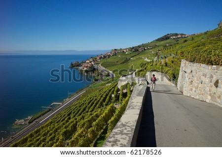 Hiking in Lavaux Switzerland - stock photo