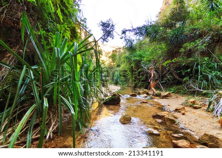 Hiking in the beautiful canyons of Isalo national park, Madagascar - stock photo