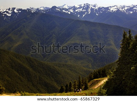 Hiking in the Green Valleys Evergreens, Snow Mountains Hurricane Ridge Olympic National Park Washington State Pacific Northwest  Ridge Line - stock photo