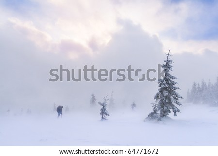 hiking in the snowstorm in Carpathian - stock photo