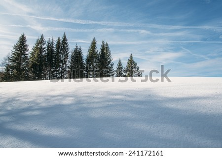 Hiking in the winter hills and mountains. Outdoor activity on a clear and sunny day. Vast forests and meadows covered with snow. Dramatic scenery in the Julian Alps. - stock photo