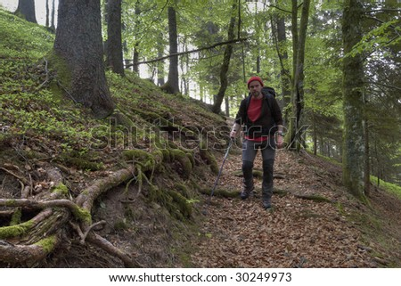 hiking man in Black Forest, Germany
