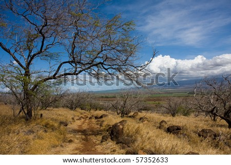 Hiking on the lahaina pali trail, Maui, Hawaii, under a bright sunny day. View of the Haleakala Volcano in the background. - stock photo