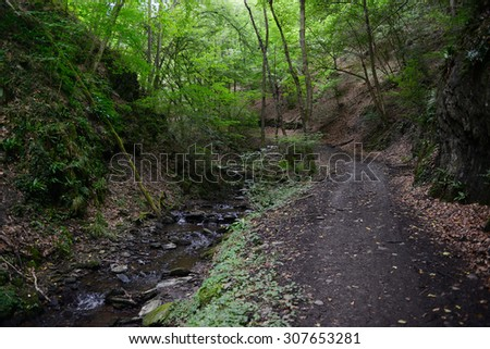 hiking path along wild stream Brodenbach next to Mosel River. Waterfalls and stones. wild landscape. (Germany, Rhineland-palatinate) - stock photo