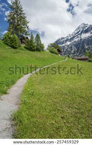 Hiking path in Grindelwald, Swiss - stock photo